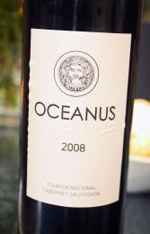 fiuza-oceanus-touriga-nacional-cabernet-sauvignon-harmonização