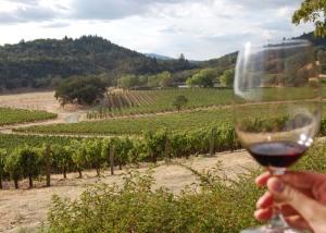 Joseph Phelps Vineyards napa Valley