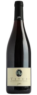 Dr-Heger-Vitus-Spätburgunder-vinho-alemão