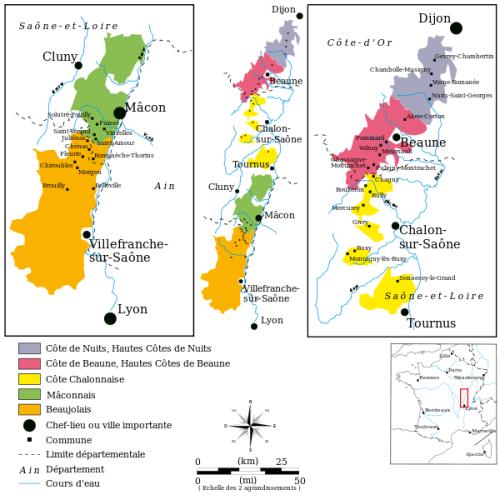 vignoble-bourgogne-região-vinhos-borgonha