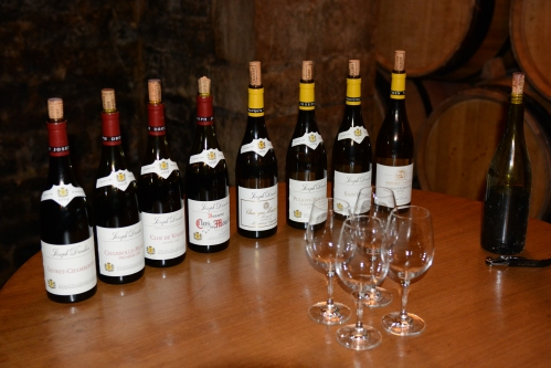 Maison-Joseph-Drouhin-Degustação-Borgonha