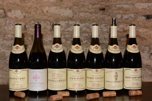 Degustação-de-vinhos-Bouchard-Père-et-Fils-Borgonha