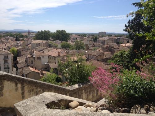 Avignon-Provence-vinhos-enoturismo