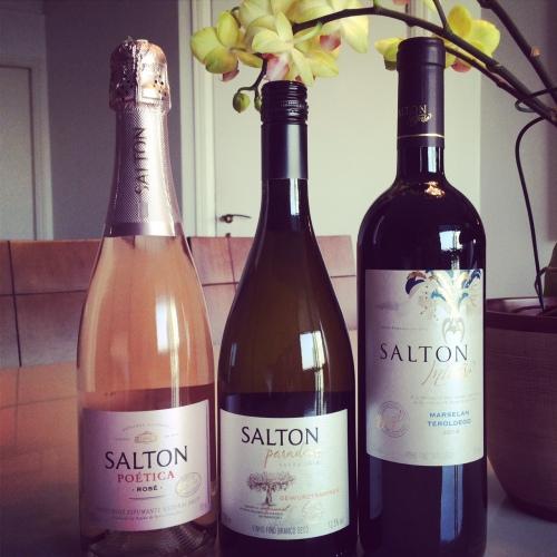 vinhos-salton-wine-bar-online
