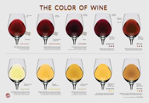 wine-color-chart-peso-do-vinho