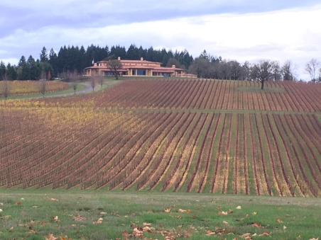 oregon-wineries-vinho-vineyards